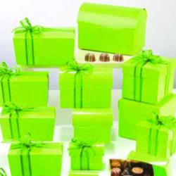 Collection Laqué Vert Pomme